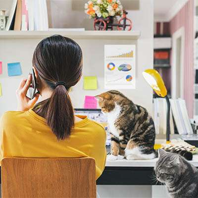 The Inevitable Compromise: The Hybrid Workplace